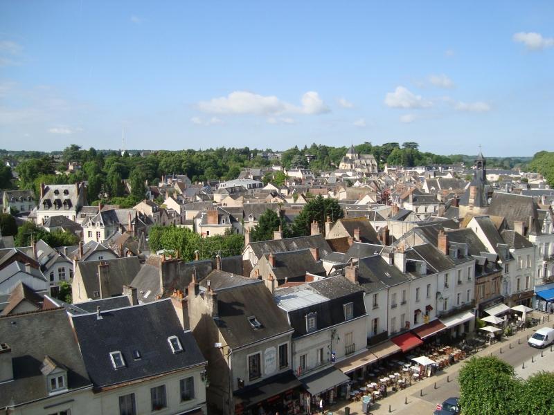 Cidade de Amboise, vista do castelo