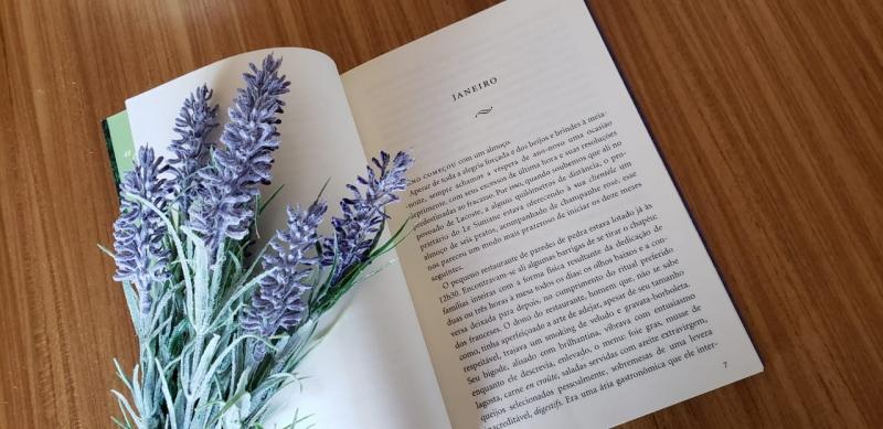Capítulos do Livro: Um ano na Provence