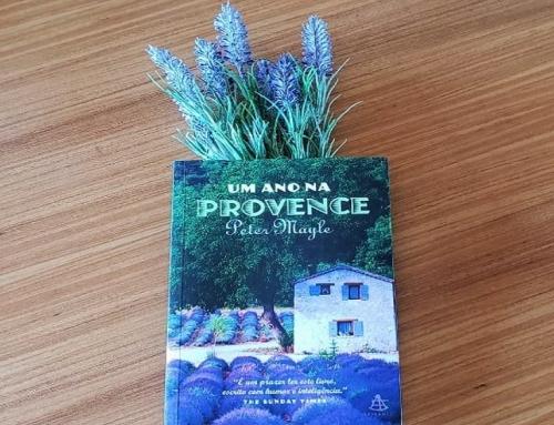Um ano na Provence: a escrita do cotidiano